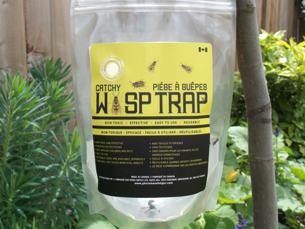 Yellowjacket and wasp trap - Intko Supply LTD.